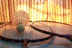 badminton-166415_1280